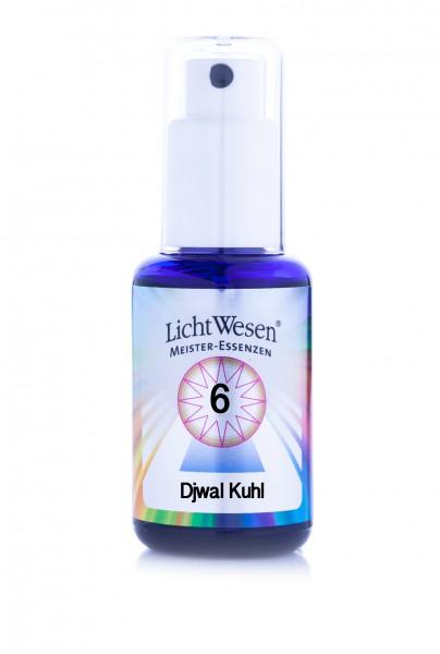 Djwal Khul - MeisterEnergie, Tinktur 30 ml